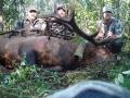 bull-elk-hunt-2011