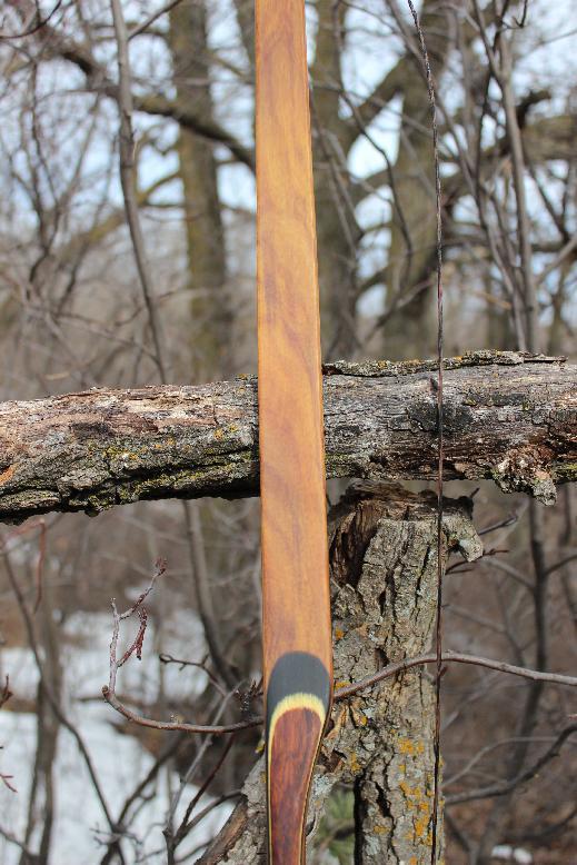 rh-54-slynx-canarywood-limb