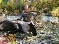 bryan-burkhardt-caribou